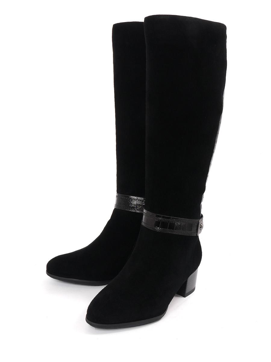 Купить Сапоги CAVALETTO, черный, натуральная замша, зима