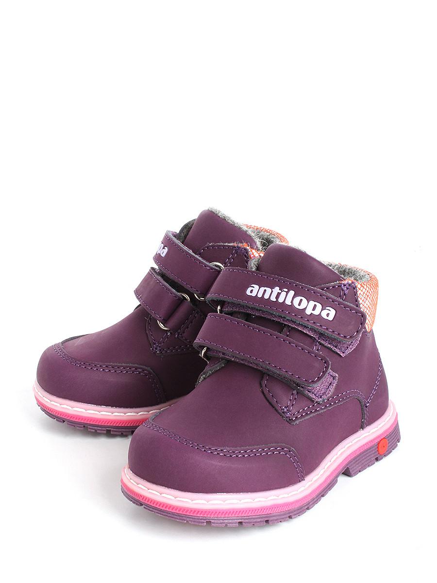 2b470f5ec Ботинки Antilopa 0000134256 купить в интернет-магазине bashmag.ru!