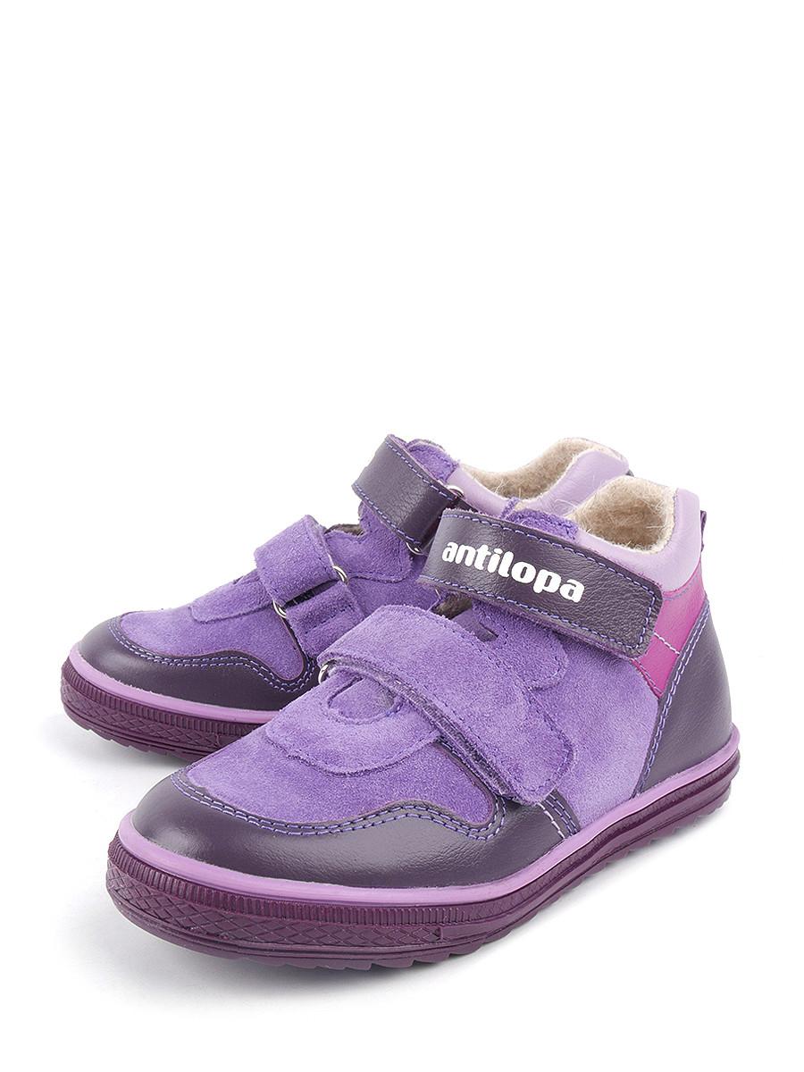 652051a54 Ботинки Antilopa 0000142214 купить в интернет-магазине bashmag.ru!