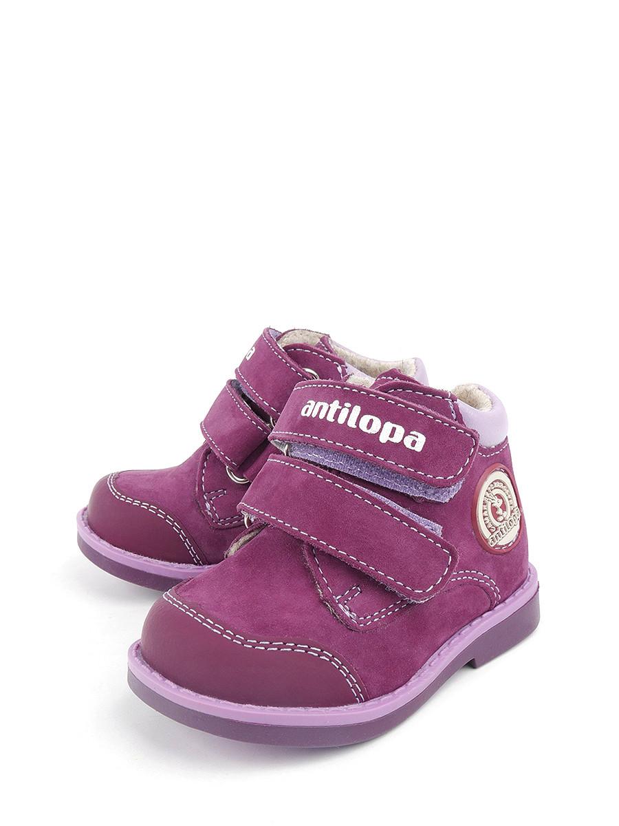 c2296bb1b Ботинки Antilopa 0000142245 купить в интернет-магазине bashmag.ru!